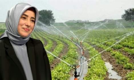Özlem Zengin, 'Tokat'ın bereketli toprakları suyla buluşacak'