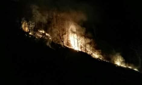 Tokat'ta orman yangını, 7 saatte söndürüldü; 50 dönüm alan kül oldu