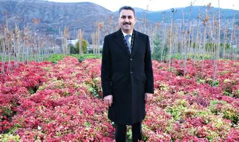 Başkan Eroğlu, 'Daha yeşil bir Tokat için çalışıyoruz'