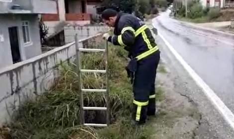Erbaa'da rögara düşen köpeği itfaiye ekipleri kurtardı