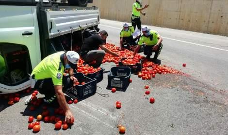 Kazada yola saçılan domatesleri polis topladı