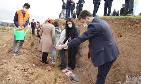 Tokat Erbaa'da sağlık çalışanları için 2 bin fidan