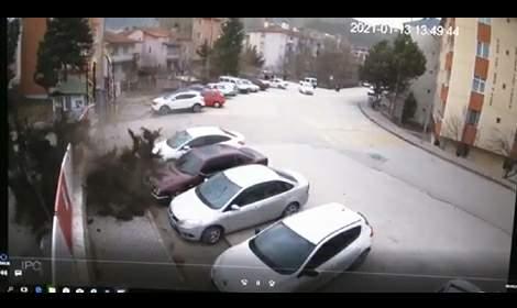 Şiddetli rüzgarda sedir ağacının devrilme anı kamerada