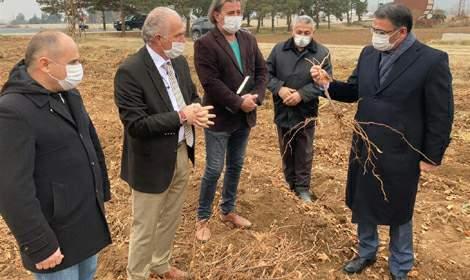 Balcı:Türk Tarımının Parlayan Yıldızı Tokat Olacak