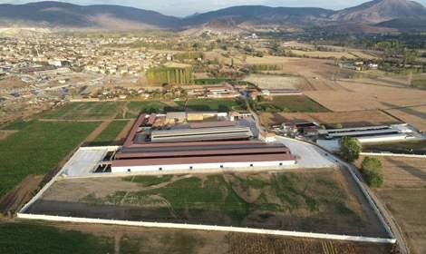 Bölgenin en büyük ve en modern besi çiftliği Turhal'da